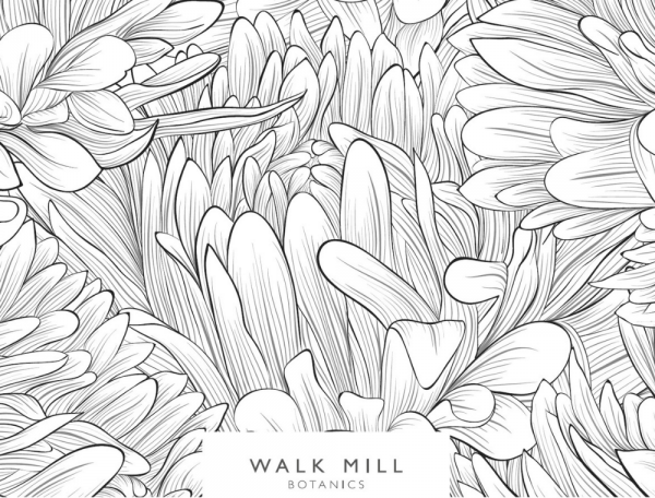 walk mill botanics gift voucher